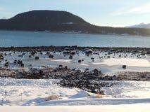 Κανάλι της Lynn, όρμος Portage, Haines Ak Στοκ Εικόνες