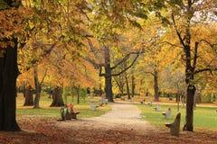 Φθινοπωρινά χρώματα Στοκ Εικόνες