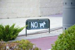 Κανένα σκυλί Στοκ Εικόνες