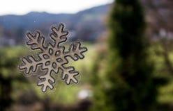Κανένα χιόνι Στοκ φωτογραφίες με δικαίωμα ελεύθερης χρήσης