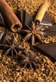 Κανέλα σκονών κακάου γλυκάνισου αστεριών σοκολάτας Στοκ Φωτογραφία