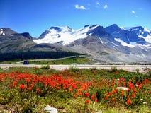 Καναδάς, εθνικό πάρκο ιασπίδων Banff, χώρος στάθμευσης Icefields Στοκ Εικόνες