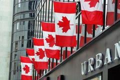 καναδικές σημαίες στοκ φωτογραφίες