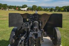 Καναδικοί κανόνας & αεροσκάφη Ένοπλων Δυνάμεων στοκ φωτογραφίες με δικαίωμα ελεύθερης χρήσης