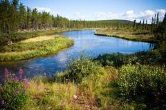 καναδικός βόρειος ποταμό στοκ εικόνα με δικαίωμα ελεύθερης χρήσης