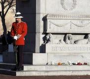Καναδικός στρατιώτης ιστορικό σε ομοιόμορφο στο κενοτάφιο για την ημέρα ενθύμησης Στοκ φωτογραφία με δικαίωμα ελεύθερης χρήσης