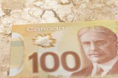 καναδικό νόμισμα Δολάρια Κινηματογράφηση σε πρώτο πλάνο στο μαρμάρινο πίνακα