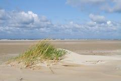 Καναπές άμμου στο μικρό αμμόλοφο Στοκ Εικόνες