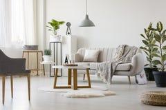 Καναπές με το κάλυμμα και το μαξιλάρι Στοκ Εικόνα