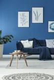Καναπές με το κάλυμμα Στοκ εικόνα με δικαίωμα ελεύθερης χρήσης