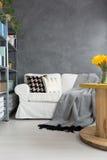 Καναπές στο γκρίζο δωμάτιο Στοκ Εικόνα
