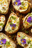 Καναπεδάκια με τα eddible λουλούδια και το hummus ευρέων φασολιών Στοκ φωτογραφία με δικαίωμα ελεύθερης χρήσης