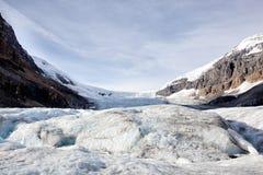 καναδική Κολούμπια athabasca Αλμπέρτα διάσημη ιάσπιδα παγετώνων του Καναδά icefield το περισσότερο εθνικό πάρκο rockies που λαμβά Στοκ φωτογραφία με δικαίωμα ελεύθερης χρήσης