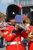 Καναδικός στρατός Στοκ Εικόνες