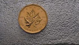 Καναδικό χρυσό νόμισμα φύλλων σφενδάμου στον ασημένιο φραγμό Στοκ Εικόνες