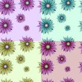 Κανονικό άνευ ραφής σχέδιο με τα λουλούδια συλλογές του σχεδίου Στοκ Εικόνα