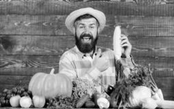 Καπέλο αχύρου της Farmer που παρουσιάζει τα φρέσκα λαχανικά Farmer με τη homegrown συγκομιδών εμφάνιση χωρικών της Farmer αγροτικ στοκ φωτογραφία