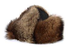καπέλο γουνών Στοκ Εικόνες