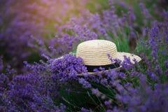 Καπέλο αχύρου lavender στον τομέα το καλοκαίρι Στοκ Φωτογραφίες
