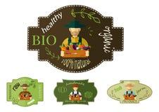Καπέλο της Farmer, επιλεγμένα λαχανικά Διανυσματική απεικόνιση, εικονίδιο Στοκ Φωτογραφίες