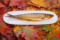 Καπνισμένα ψάρια σε ένα άσπρο πιάτο Στοκ φωτογραφία με δικαίωμα ελεύθερης χρήσης
