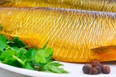 Καπνισμένα ψάρια στο πιάτο κοντά επάνω Στοκ εικόνες με δικαίωμα ελεύθερης χρήσης