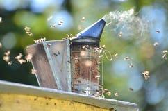 Καπνιστής μελισσών στοκ φωτογραφίες