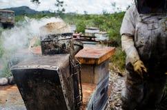 Καπνιστής 2 μελισσών Στοκ φωτογραφία με δικαίωμα ελεύθερης χρήσης