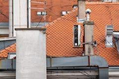 Καπνοδόχος στεγών Στοκ Εικόνες