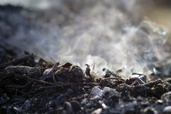 Καπνός και τέφρες της μακροχρόνιας έκθεσης φωτιών μακροεντολή κινηματογραφήσεων σε πρώτο πλάνο στοκ φωτογραφία με δικαίωμα ελεύθερης χρήσης