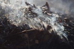 Καπνός και τέφρες της μακροχρόνιας έκθεσης φωτιών μακροεντολή κινηματογραφήσεων σε πρώτο πλάνο στοκ εικόνα με δικαίωμα ελεύθερης χρήσης