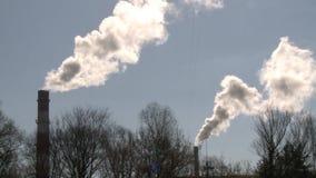 Καπνός καπνοδόχων στο υπόβαθρο μπλε ουρανού Δέντρα χωρίς φύλλα r απόθεμα βίντεο