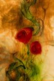 καπνός λουλουδιών ελεύθερη απεικόνιση δικαιώματος
