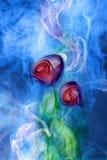 Καπνός λουλουδιών διανυσματική απεικόνιση