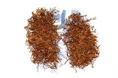 καπνός πνευμόνων Στοκ Φωτογραφίες