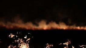 καπνός πυρκαγιάς Δίκρανα της φλόγας απόθεμα βίντεο