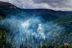 Καπνός σε ένα φαράγγι των βουνών Carpathians Στοκ Εικόνες