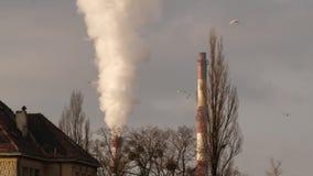 Καπνός στην γκρίζα ημέρα πόλεων φιλμ μικρού μήκους