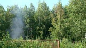 Καπνός του καψίματος του αυτοκινήτου πέρα από τον τομέα στο θερινό δάσος Στοκ Φωτογραφίες