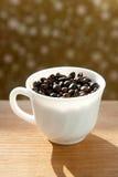 ΚΑΠ του καφέ στοκ εικόνα