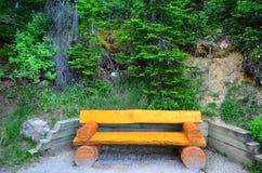 Καρέκλα κούτσουρων στο καναδικό δασικό ίχνος Στοκ φωτογραφία με δικαίωμα ελεύθερης χρήσης