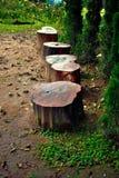 Καρέκλα κολοβωμάτων στο πάρκο Στοκ Φωτογραφία