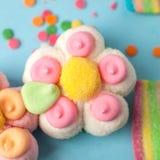 καραμέλες με το σχέδιο ζελατίνας και ζάχαρης ζωηρόχρωμη σειρά διαφορετικών γλυκών και απολαύσεων childs Φωτεινό υπόβαθρο κομμάτων Στοκ φωτογραφίες με δικαίωμα ελεύθερης χρήσης