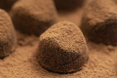 Καραμέλες σοκολάτας τρουφών στη σκόνη κακάου Γαστρονομικά τρόφιμα, εύγευστο επιδόρπιο στοκ εικόνες με δικαίωμα ελεύθερης χρήσης