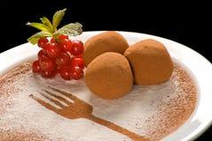 Καραμέλες τρουφών σοκολάτας με το οργανικό κακάο σε ένα άσπρο πιάτο στοκ φωτογραφία με δικαίωμα ελεύθερης χρήσης