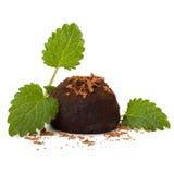 Καραμέλα τρουφών σοκολάτας Στοκ φωτογραφίες με δικαίωμα ελεύθερης χρήσης