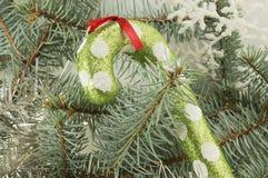 Καραμέλα Lollipop σε έναν κλάδο χριστουγεννιάτικων δέντρων έλατου Στοκ Φωτογραφία