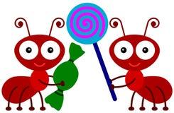 Καραμέλες αγάπης μυρμηγκιών απεικόνιση αποθεμάτων