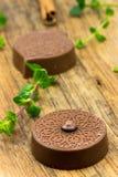 Καραμέλες και μέντα σοκολάτας πολυτέλειας Στοκ Εικόνα