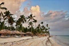 Καραϊβική παραλία με πολλούς φοίνικες και άσπρη άμμο Στοκ Φωτογραφία